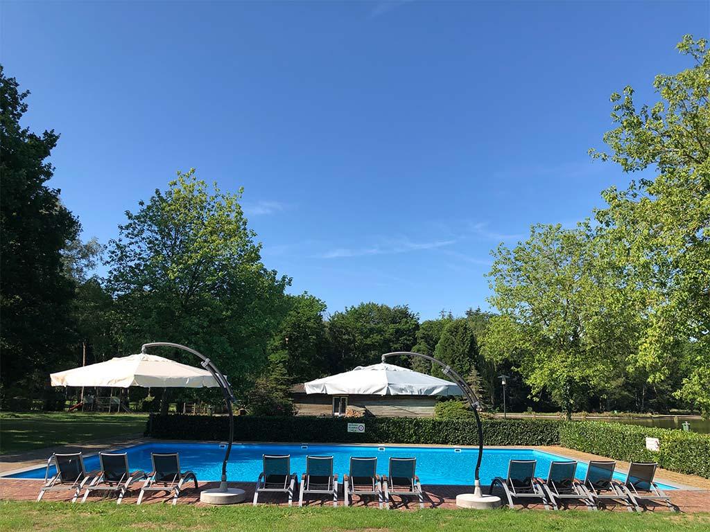 3 daags burgers zoo arrangement fletcher hotels - Zwembad arrangement ...
